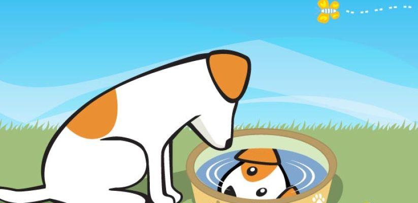 Շունը ջրհորի մոտ