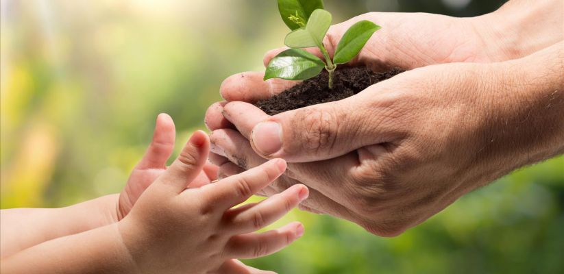 Սովորեցնում ենք երեխաներին հոգ տանել շրջակա միջավայրի մասին