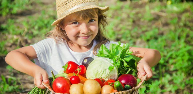 Ինչպես սովորեցնել երեխաներին բանջարեղեն աճեցնել և ուտել