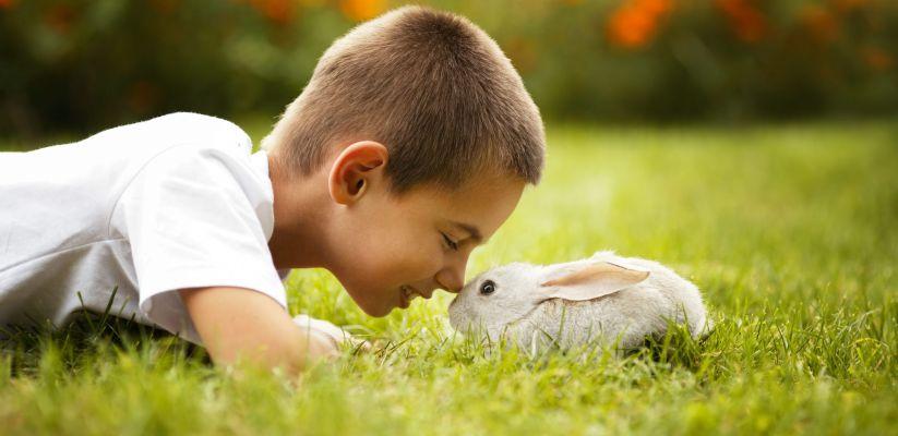 Ինչպես սովորեցնել երեխային լինել հոգատար
